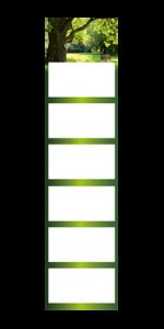6-Month-Calendar super 2 magnum Example